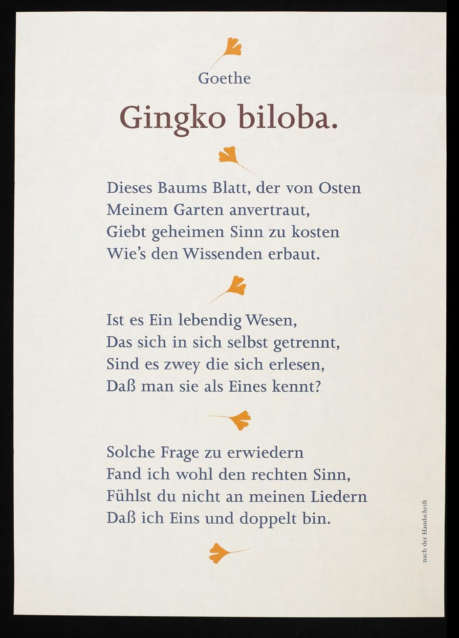 Ginkgo Biloba Freies Deutsches Hochstift Frankfurter